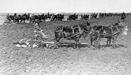 Plowing on the Grandin farm.