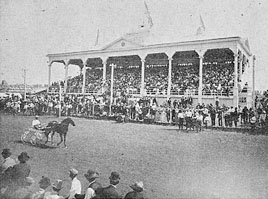 Horse racing at the fair.